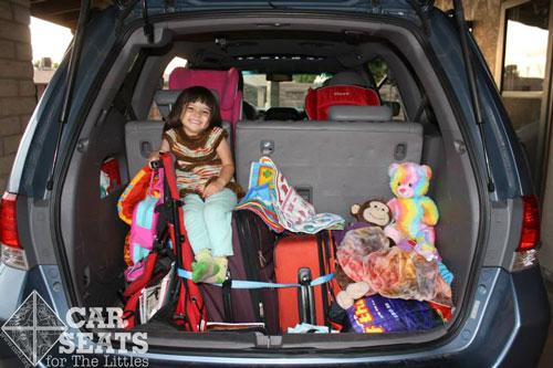 Авто багажник украшение